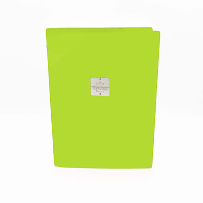 Green Recycled leder